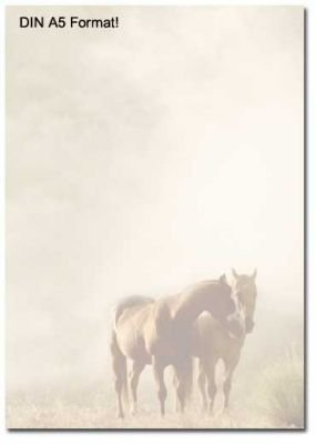 Motivpapier Briefpapier Pferde Im Nebel 50 Blatt Din A5 Amazon De