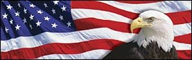 US Flag 2 Eagle Rear Window Graphic