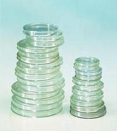 Polystyr/ène de qualit/é avec une surface tr/ès r/ésistant aux rayures Inner diameter: 33 mm 10 pi/èces Capsules pour monnaies 33 mm Lindner 2250033