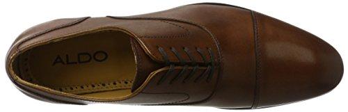 Aldo Gregory - Zapatos Hombre Marrón (28 Cognac)
