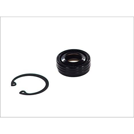 Amazon com: Santech Industries MT2220 A/C Compressor Shaft Seal Kit