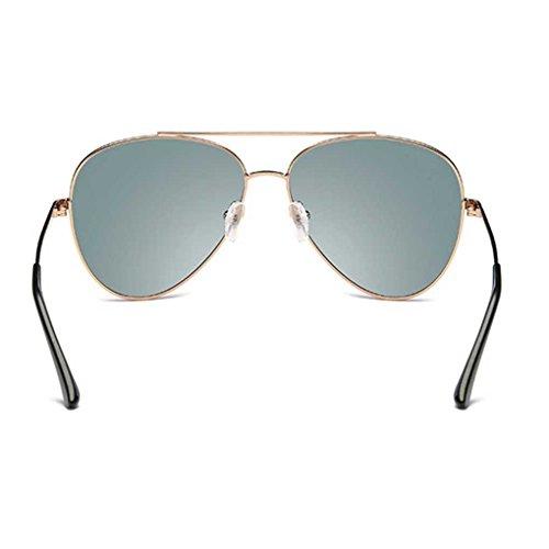 Conducir Sol polarizados 4 de los de de Vidrios de Metal piloto Gafas Clásica Sol Frame Gafas Providethebest Gafas Coolsir Hombres Fresca XwZ7qA