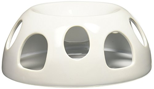 Pioneer Pet Ceramic (Pioneer Pet Tiger Diner Ceramic Food Dish/Bowl, White)