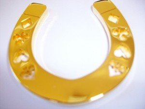 - Gold Horseshoe Poker Weight
