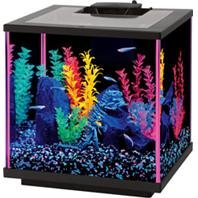 DPD AQUEON NEOGLOW AQUARIUM KIT CUBE - Size: 7.5 GALLON - Color PINK by DPD