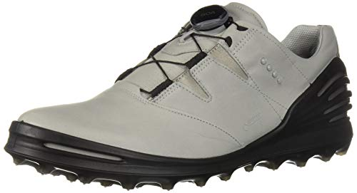 (ECCO Men's Cage Pro Boa 2 Gore-TEX Golf Shoe, Wild Dove, 45 M EU (11-11.5 US))