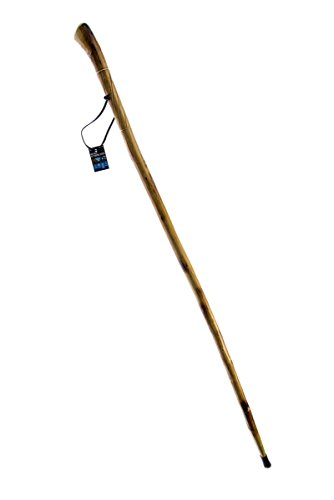 SE WS631 51RH  Natural Wood Walking Stick with Root Head, Carved Design and Steel Spike, 55""
