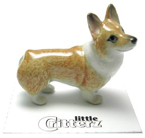 WELSH CORGI Pembroke Puppy Dog