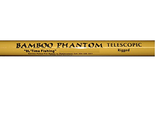 Cheap Blaze Poles Hicks Bamboo Phantom 4S-14 Tele' – BHT14