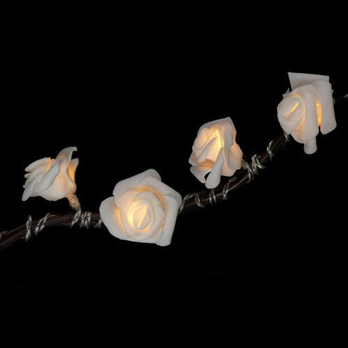 Fortune Products ROSE-200WW Roses on a String Light, 10' Length, Warm White Lights (Single Strand)