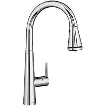 American Standard 4932300 002 Edgewater Pull Down Kitchen