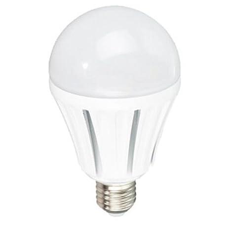 20W de potencia Bombilla clásica LED 230V E27 Blanco fría: Amazon.es: Iluminación