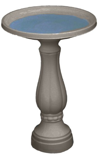 Bird Bath with Pedestal