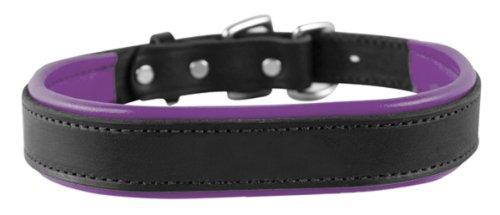 Perri's Leather Padded Leather Dog Collar, Medium, Black with (Purple Leather Dog Collar)