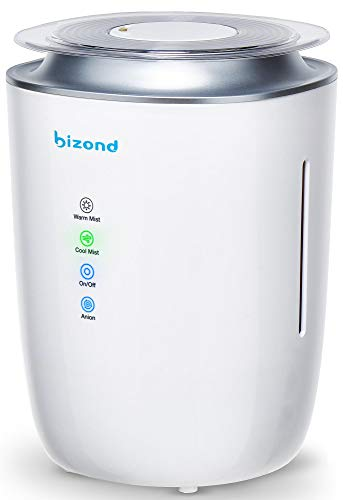 31ZH236SXjL Best Humidifier for Singers