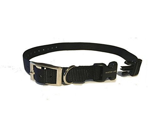 educator-e-collar-3-4-quick-snap-double-buckle-replacement-dog-strapblack