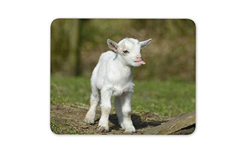 Cute White Baby Goat Mouse Mat Pad - Goats Kid Farm Animal Mouse Pad Mousepad -8650