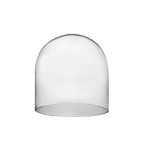 CYS GDO106 Cloche Glass Dome, 12