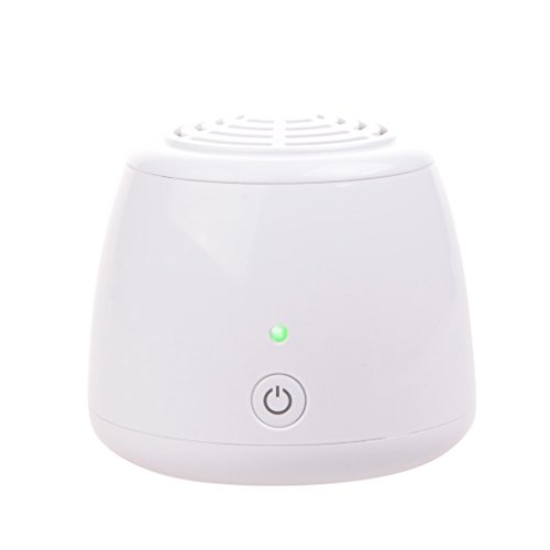 Wotefusi Mini Ionic Air Purifier Ozone Generator Cleaner HEPA Filter Odor Reduction 12.36 Cu Ft USB Port/Battery Power