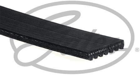 GATES 7PK1035 Belt