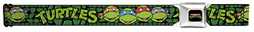 Buckle-Down Seatbelt Belt - Classic TMNT Group Faces/TURTLES Turtle Shell Black/Green - 1.5