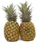 Fresh Tropical Gold Hawaiian Pineapples (Case) by Hawaiian Joe