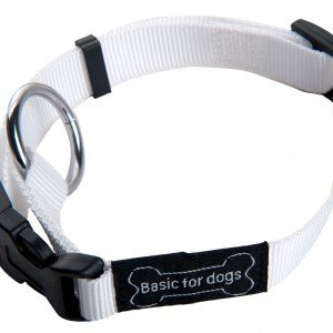 Wouapy Basic Line Collar for Dog, 40 mm Width, Neck Size 45/72 cm, White