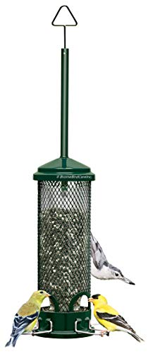 (Squirrel Buster Mini Squirrel-proof Bird Feeder w/4 Metal Perches, 0.98-pound Seed Capacity)