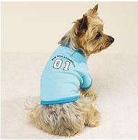 bluee Bow Wow Athletics Dog Shirt, Size  X-Large,  ZW438 XL