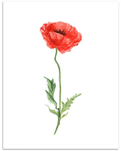 Watercolor Poppy Flower Wall Art - 11x14 Unframed, Digital Decor Print - Makes a Great Gift Under $15 for Botanical, Floral Lovers