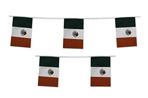 Mexico Flag Mexican String Flags Cinco de Mayo Banner 33ft Decoration