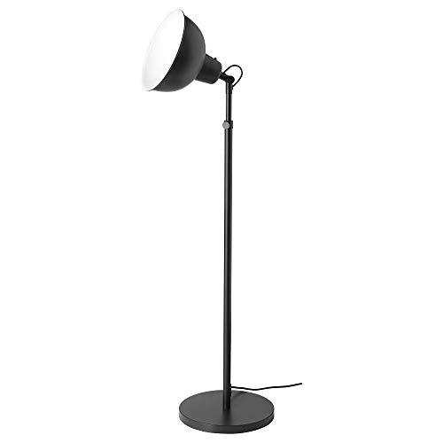 Amazon.com: Ikea 603.260.05 Skurup - Planta para esquí ...