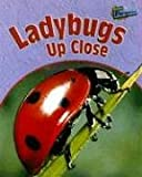 Ladybugs up Close, Greg Pyers, 1410915379