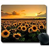 Sunflower Ports (Mouse Pad with Sunflower Field Non-Slip Neoprene Rubber desktop/computer mouse mat. Size: 9 Inch(220mm) X 7 Inch(180mm) X 1/8(3mm))