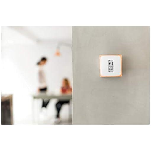 Netatmo Termostato Wifi Inteligente para caldera individual, NTH-ES-EC