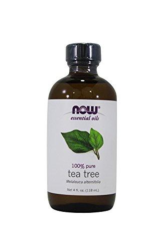 Now Foods, Essential Oil Tea Tree, 4 Ounce
