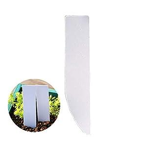 xiamenchangketongmaoyi Etichette vegetali per Fiori Etichette vegetali per Semi Etichette per Piante in Vaso Etichette… 1 spesavip