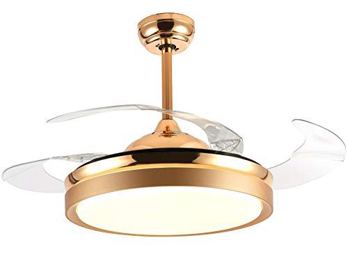 Bella Depot Ceiling Fans with Lights Gold Contemporary Ceiling Fans Retractable Blades Remote Control Included, CCT Dimmable LED Light ()