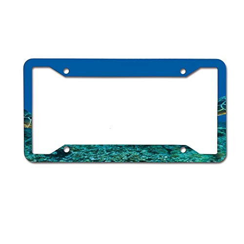 (Mrsangelalouise Turtle Selfie Under Water Coral Reef License Plate Frame Aluminum Car License Plate Cover Tag 4 Holes and Screws)