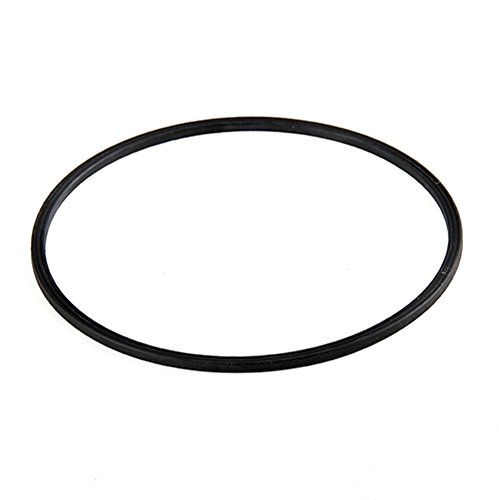 Replacement Motor Seal for Summer Waves X1500 Pump Motors