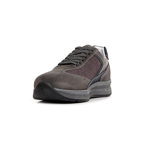 Nero Niedrige Gris Sneaker Herren Giardini xCRqxgFw8