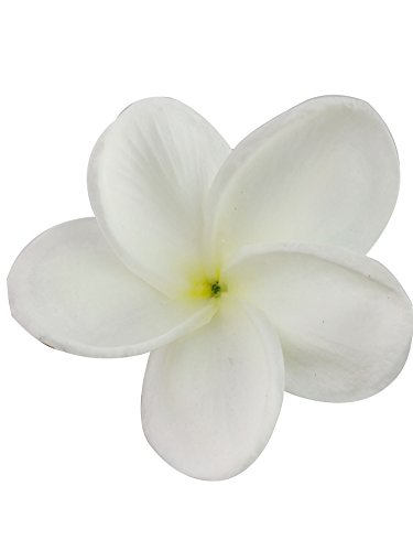 Winterworm-Bunch-of-10-PU-Real-Touch-Lifelike-Artificial-Plumeria-Frangipani-Flower-Bouquets-Fake-Wedding-Cake-Home-Party-Decoration-White