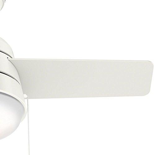 Hunter Fan Company 59301 Aker Ceiling Fan Hunter Light, 36'', Fresh White by Hunter Fan Company (Image #2)
