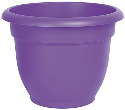 - Round Pot Planter Color: Royal Lilac