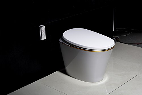 R570-2 Radar Detect Smart One-Piece Siphon Toilet Set With Auto-open,Auto-close,Washer Heating,Cushion Heating