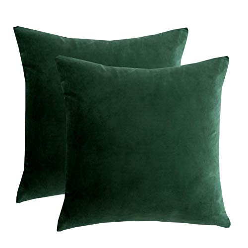 RainRoad Velvet Decorative Throw Pillow Covers Cushion Cover Pillow Case for Sofa Couch Bed Chair,Soft Square Dark Green Throw Pillows 18x18 Inch,Set of 2 (Velvet Pillow Covers Throw)