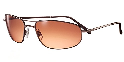 Serengeti Velocity Drivers Gradient - For Women Serengeti Sunglasses