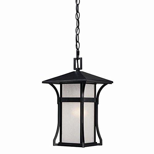 Acclaim 96026BK Tahiti Collection 1-Light Outdoor Light Fixture Hanging Lantern, Matte (Tahiti Collection)