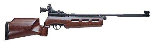 Beeman Sportsman Model AR2078B-177 Jr. Air Rifle with Diopter Peep Sight