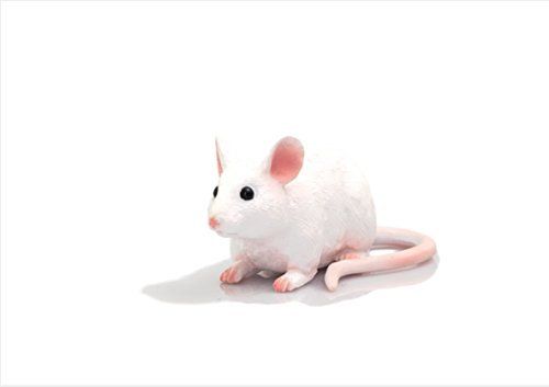 Mojo Fun 387235 Mouse Realistic Toy Pet
